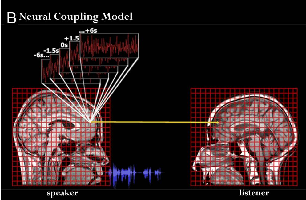 Neural Coupling Model