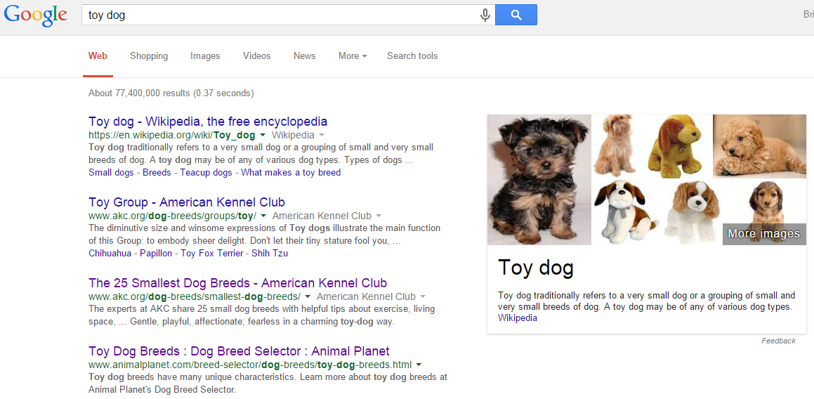 Toy dog - Google Search user experience