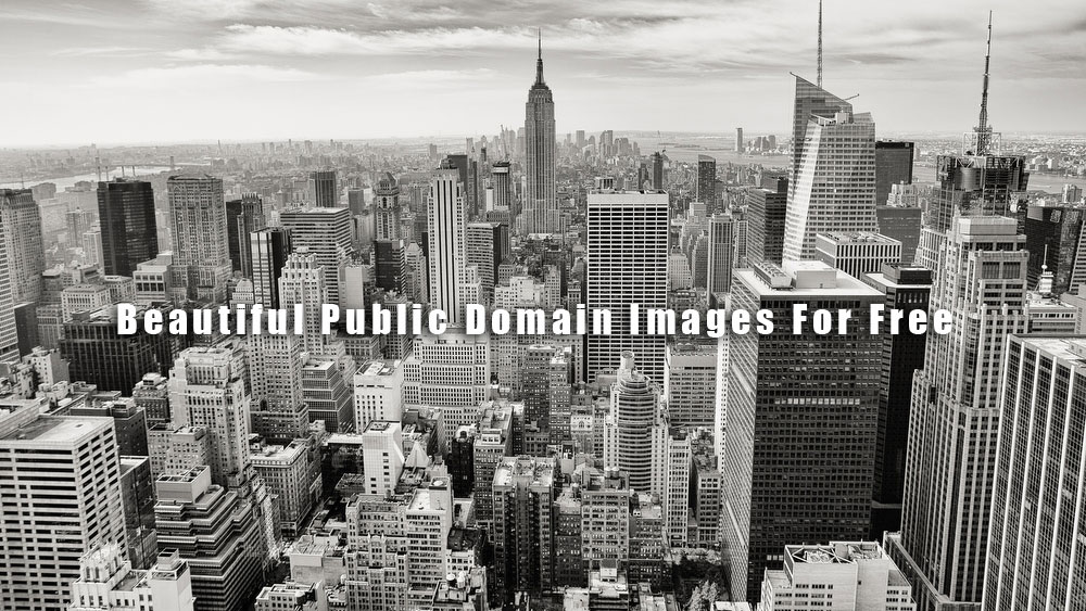 A hub that archive all the public domain images across the web.