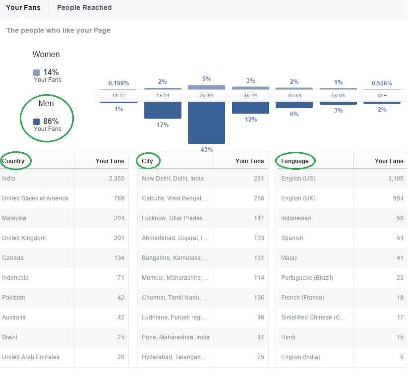FB-insights-information
