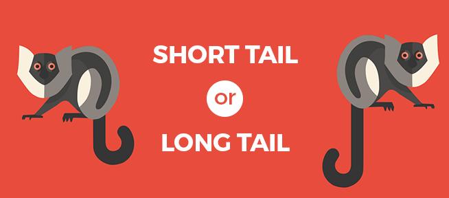 short tail or long tail keywords