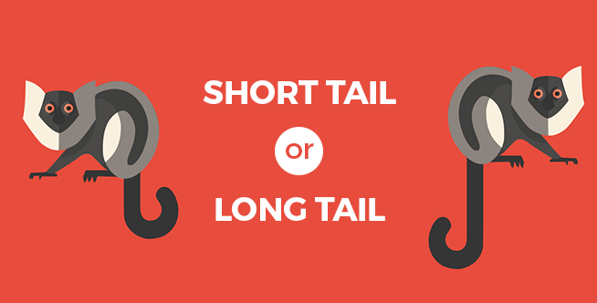 difference between long tail and short tail keywords