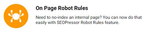 on-page robot rules