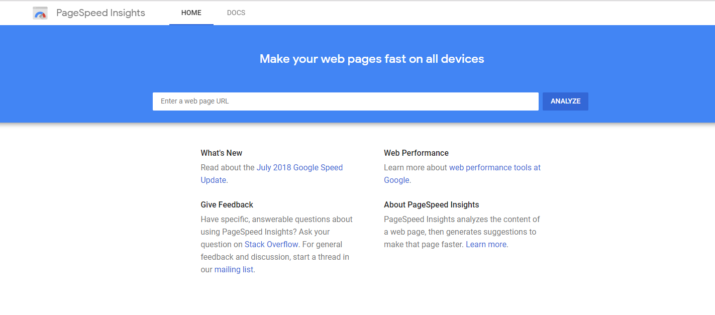 PageSpeed_Insights_Google_Homepage