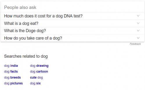 dog lsi keyword