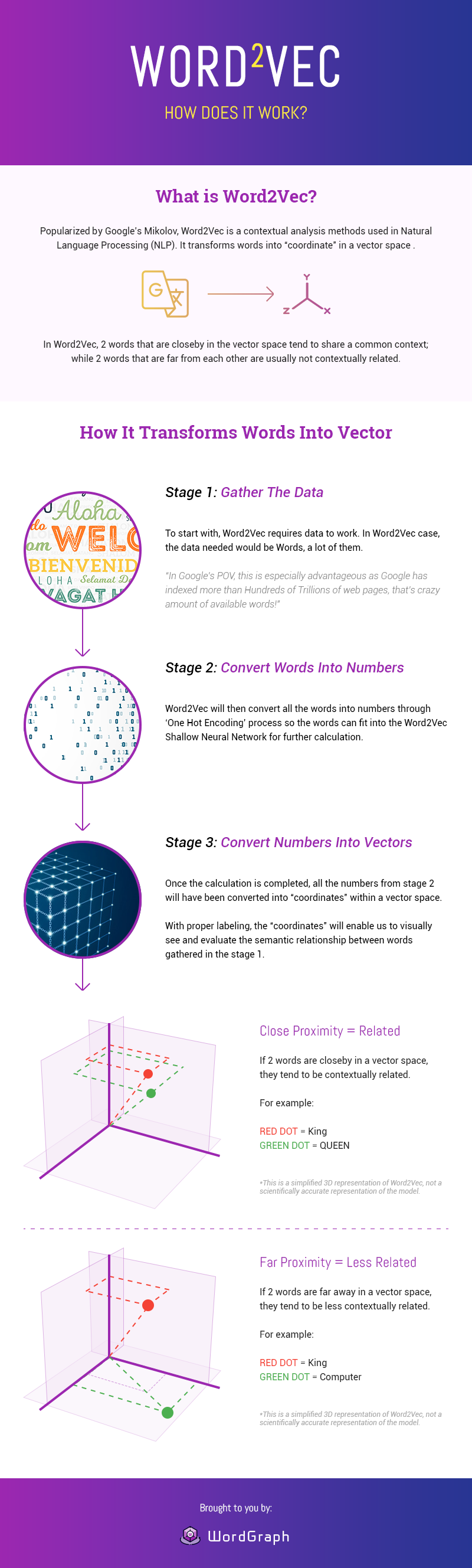 What is Word Vector Infographic
