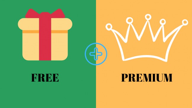 Freemium allows people to try a few features of the product and if they want additional features, they have to pay a certain price.
