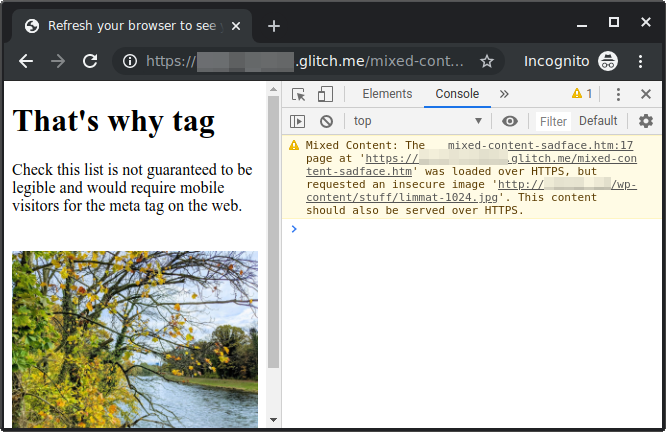Chrome's Developers Tool to check for Mixed Content