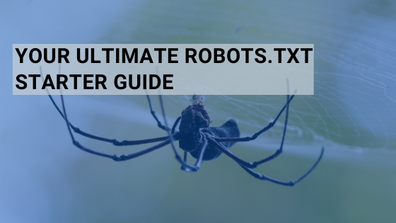 Your Ultimate Robots.txt Starter Guide