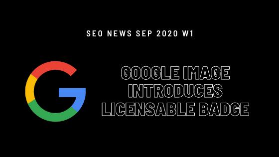 seo news update